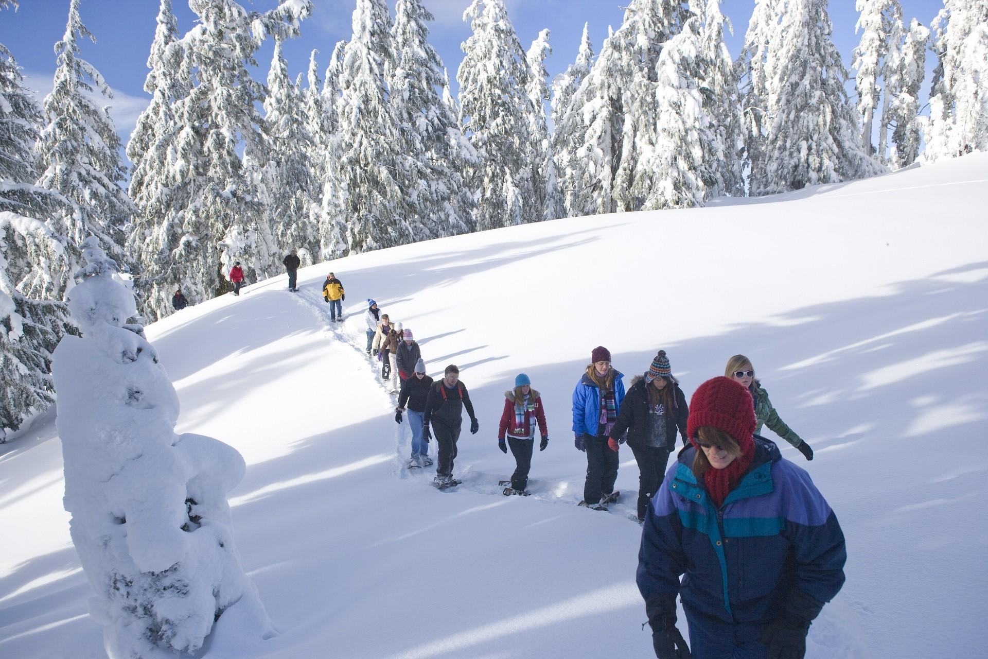 Begeleide sneeuwschoentochten