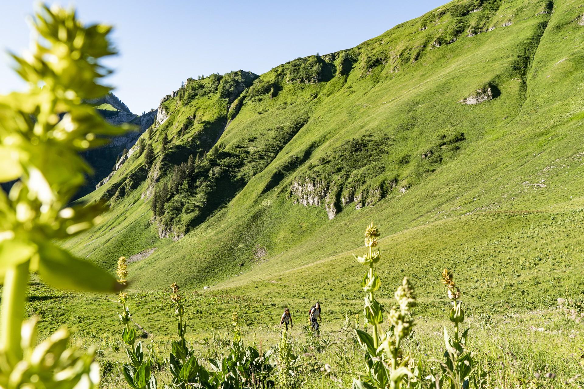 Chablais Mountains