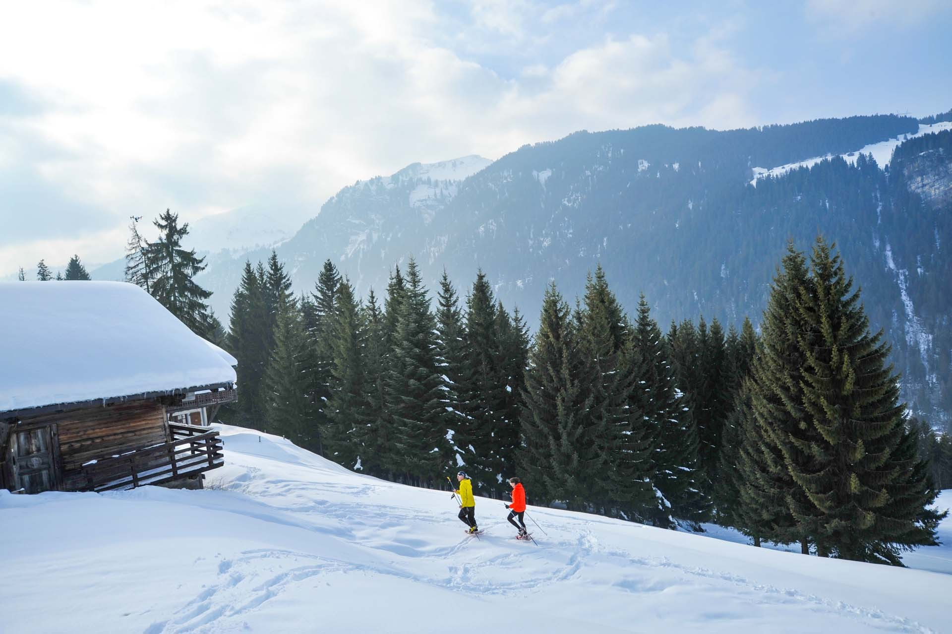 Wandelen, Sneeuwschoen