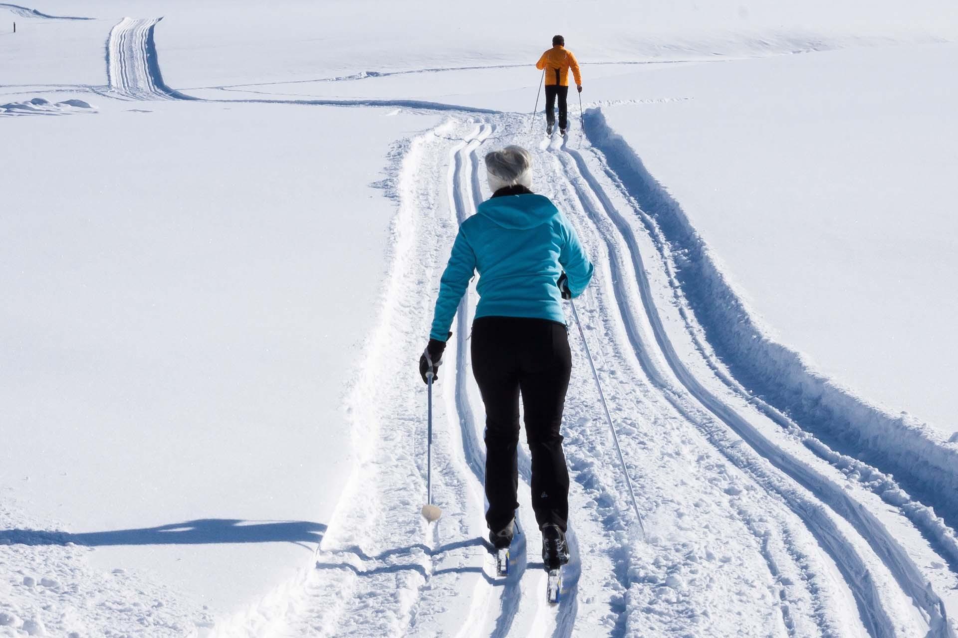 Cross-country skis rental