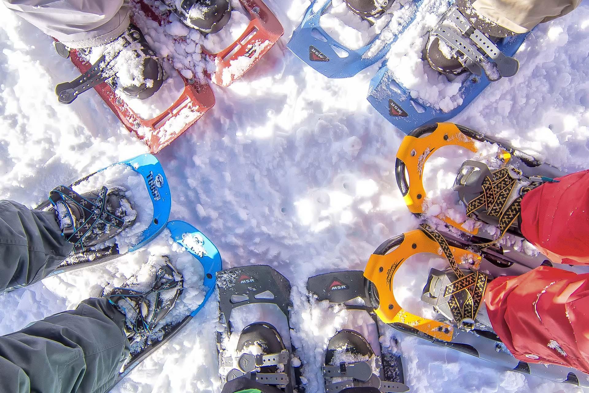 Hikes, snowshoeing