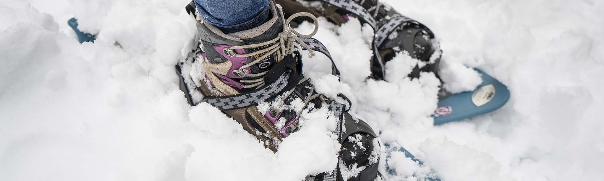 Hikes, snowshoeing