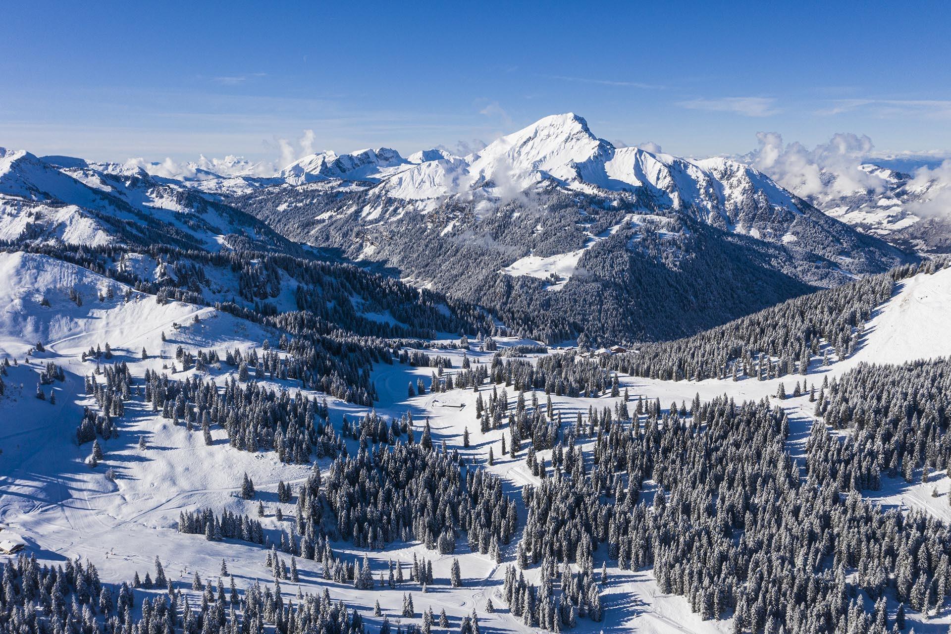 On the ski area