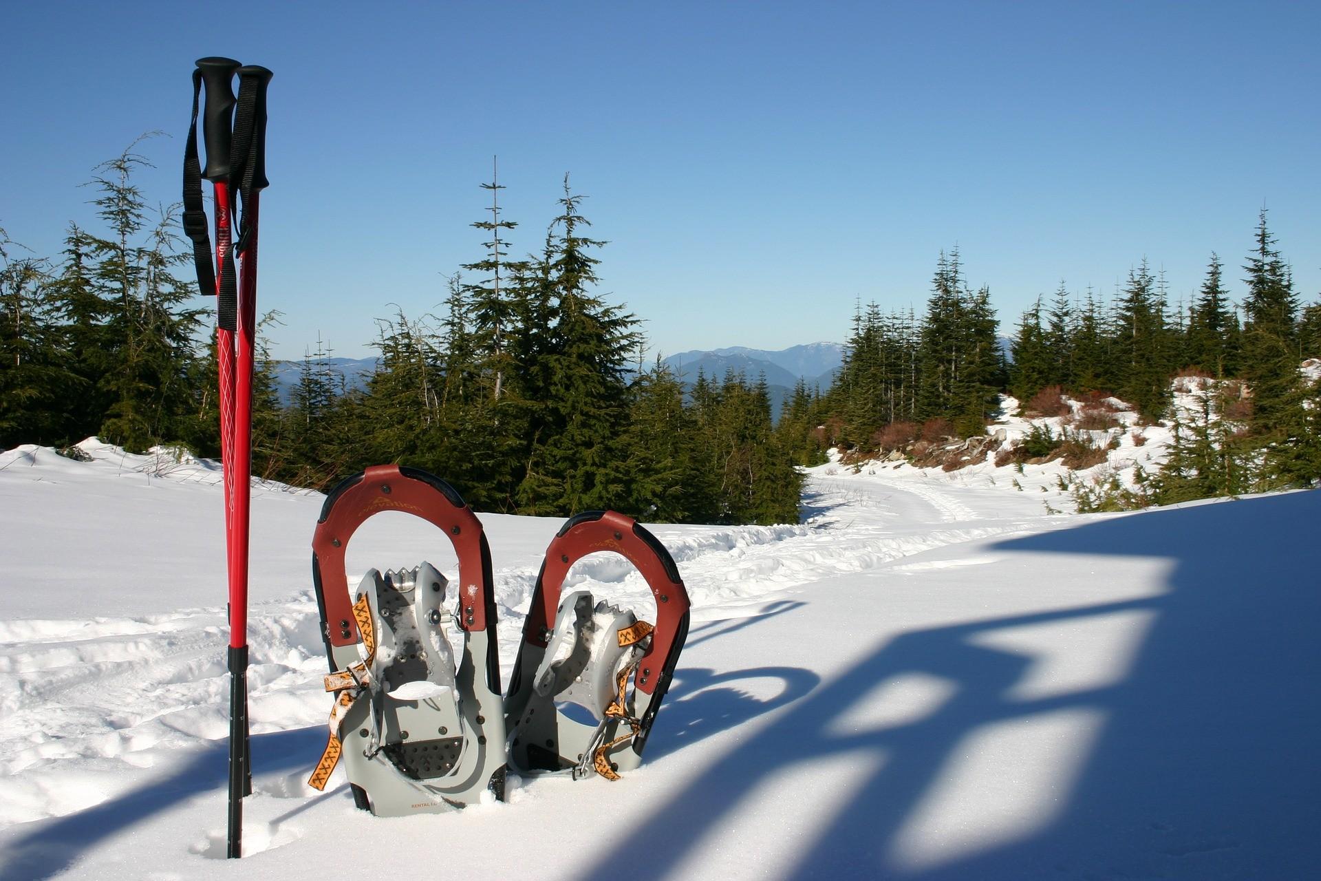 Sneeuwschoencircuits