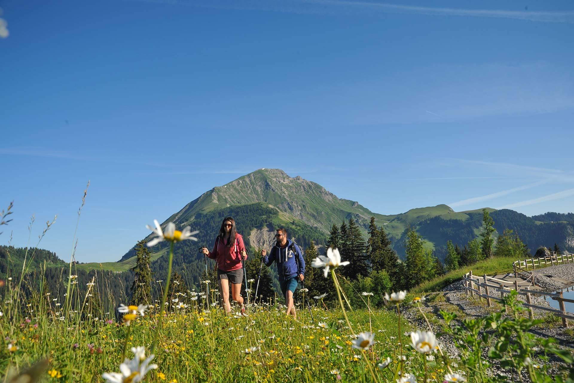 Mountain & Hiking