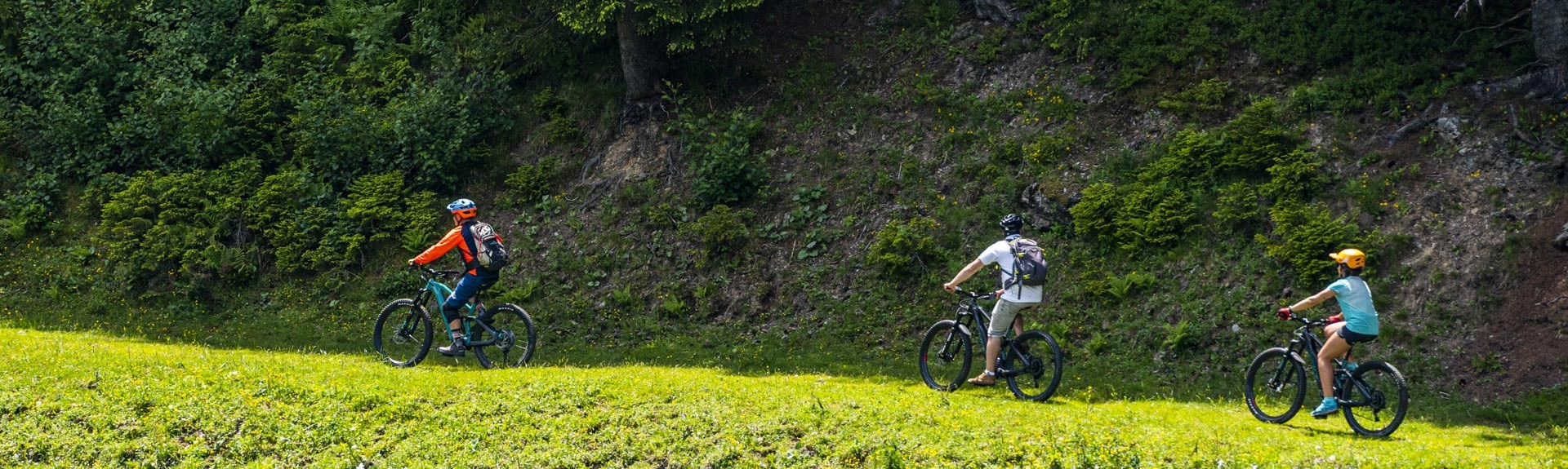 Guided trips on MTB
