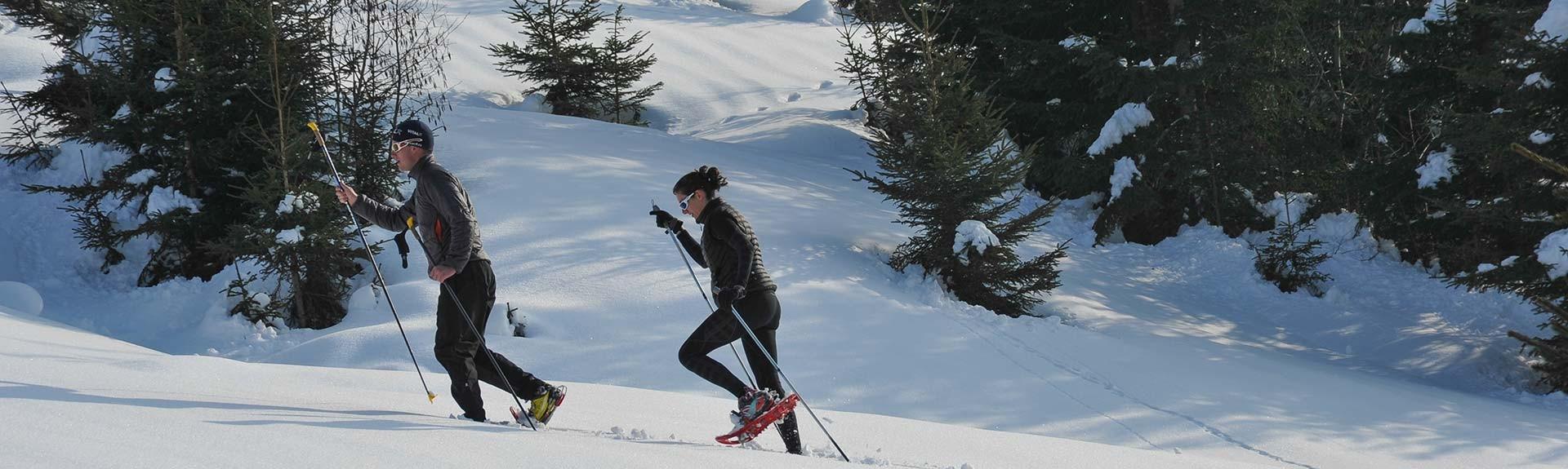 Wandelen, Sneeuwschoenen