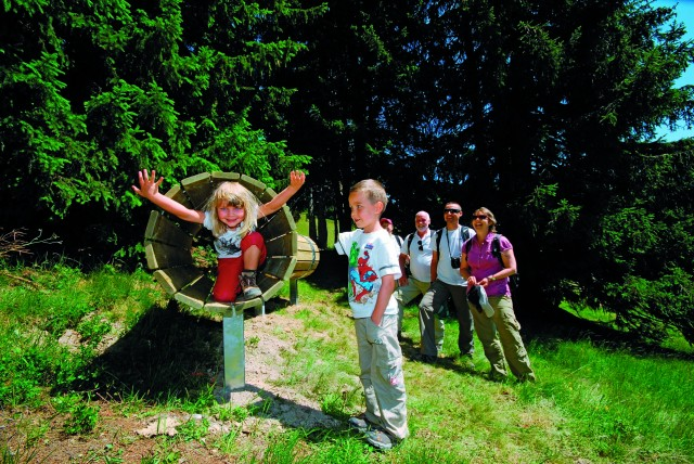 Family walks, nature discoveries