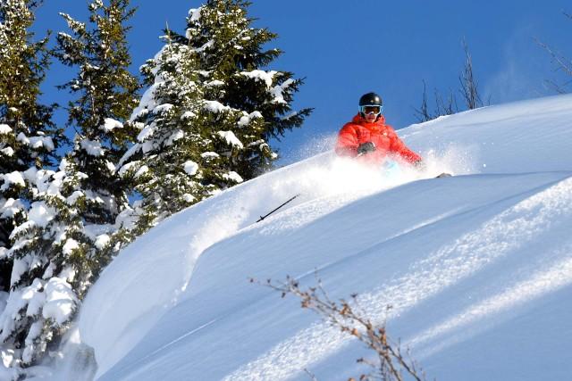Heliski, freeride, ski tour...
