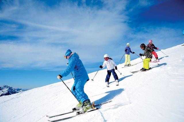 Zelfstanding Gevestige Skileraren