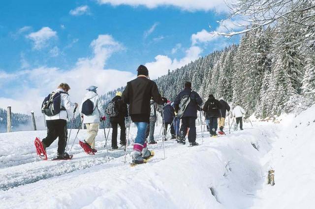 Begleide sneeuwschoentochten