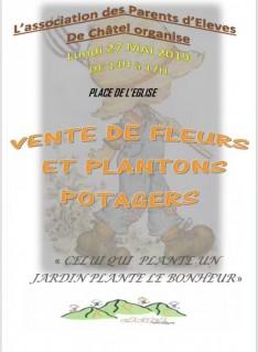 vente-de-fleurs-11208