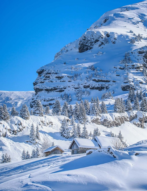 actu-hiver-11604