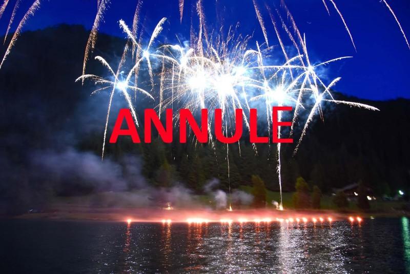 feu-d-artifice-annule-14194