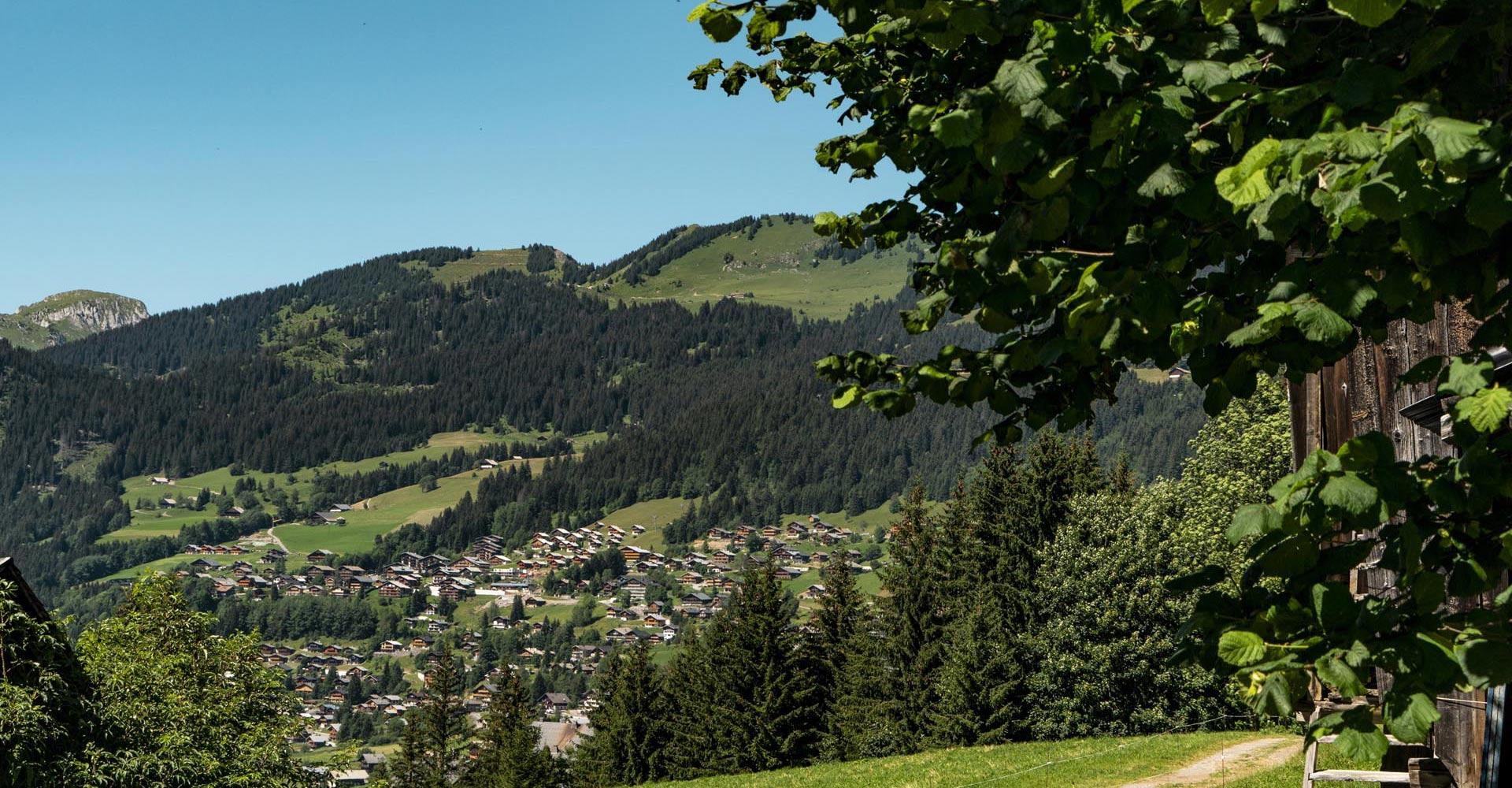 Le village en été