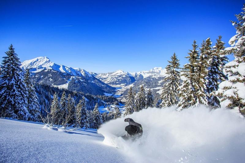 ventes-flash-forfaits-ski